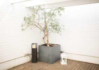 Casa en Poblenou | Finques Marbà